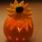 Lampion pomarańczowy