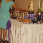 Fontanna serowa, czekoladowa, alkoholowa, carving, palmy owocowe