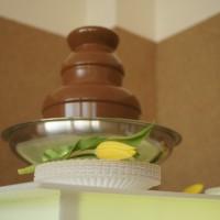 Fontanna czekoladowa Uniesienie na przyjęciu komunijnym