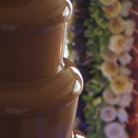 Fontanna z czekoladą i palma owocowa Hotel Rodan