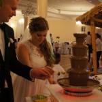 Fontanny czekoladowe, alkoholowe, serowe. Palmy i bufety owocowe. Atrakcje na przyjęcia, imprezy firmowe, eventy