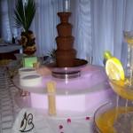Fontanna czekoladowa i alkoholowa - Zameczek z Emilianowie