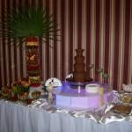 Fontanna czekoladowa, palma i bufecik owocowy - Leśna Przystań w Mikorzynie