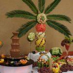 Fontanna czekoladowa i bufet owocowy Turek, Koło, Konin
