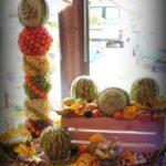 Palmy owocowe Września Słupca Koło