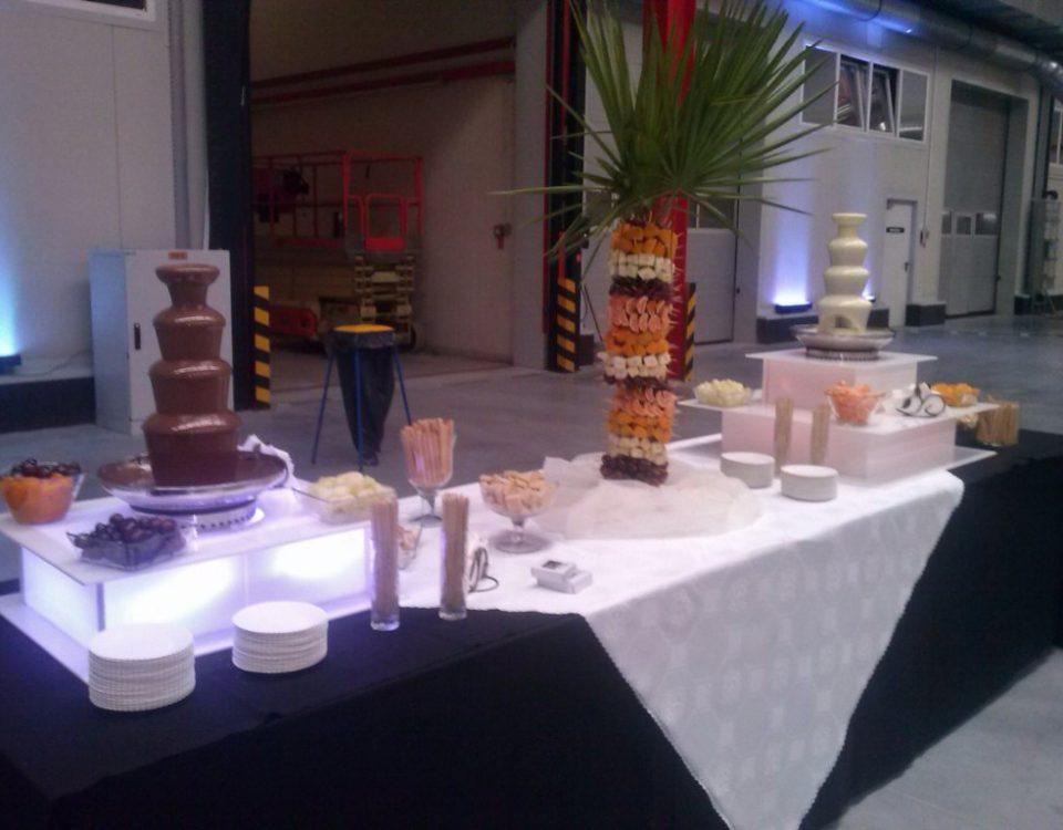 Fontanna z białą belgijską czekoladą i palma z owoców