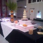 Fontanny z czekolady na podświetlanych podestach i palma z owocowymi szaszłykami