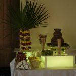 Fontanna czekoladowa w Domaninie