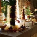 Fontanna czekoladowa i alkoholowa z owocowym stołem i carvingiem