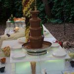 Fontanna czekoladowa i palma z owoców - Willa Ogrody w Szczecinie