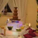 Fontanna do czekolady, palma z owoców, dekoracja w arbuzie