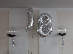 balony kule z piórami, balony na 18stkę, dekoracje balonowe, balony z helem turek, Łódź, koło, konin