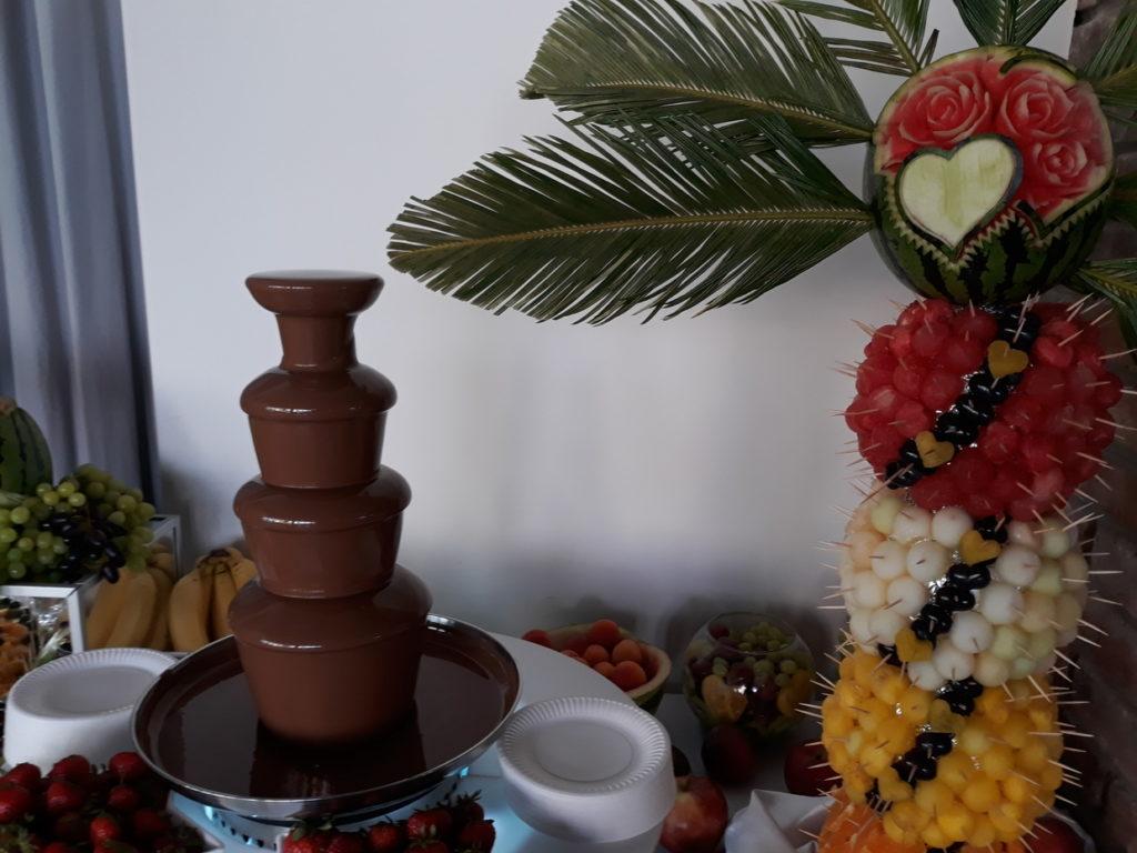 fontanna czekoladowa, palma owocowa, dekoracje owocowe, bufet owocowy Łódź, Turek, Kalisz, Turkovia