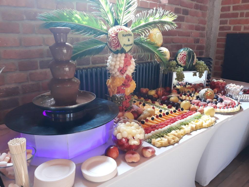 fontanna czekoladowa, stół owcwy, fruit carving, fruit bar, palma owocowa Zamek Topacz Ślęza k. Wrocławia