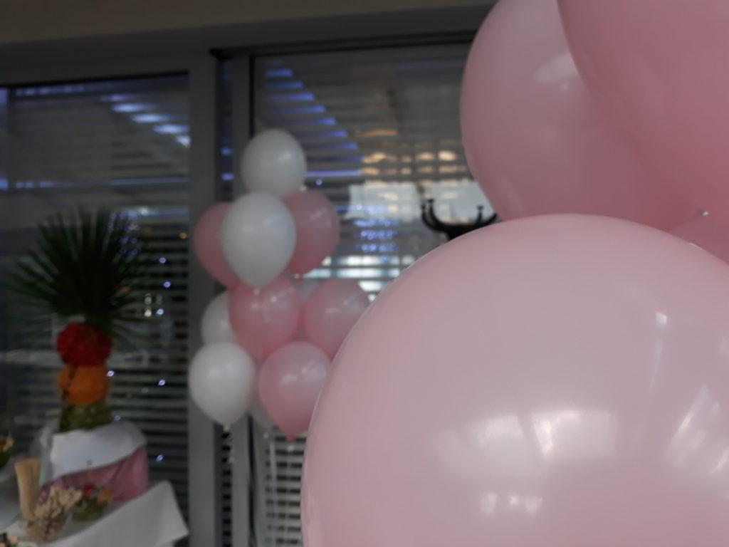 dekoracje balonowe na Chrzciny, balony z helem, fontanna czekoladowa, dekoracje owocowe Hotel Azyl Kąty Wrocławskie
