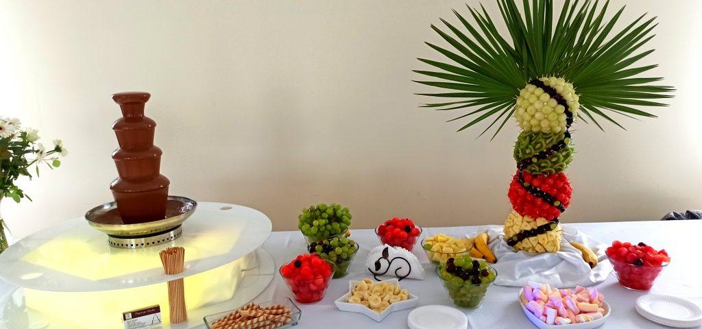fontanna czekoladowa na chrzciny, fontanna czekoladowa Łódź, palma owocowa Łódź, dekoracje owocowe Łódź